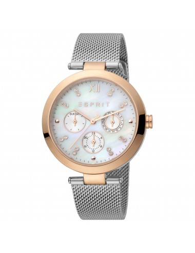 Esprit Watch ES1L213M1035