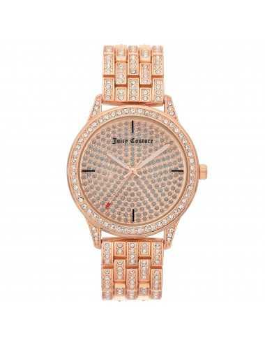 Hodinky Juicy Couture JC / 1138PVRG