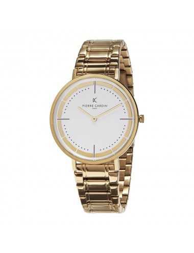 Pánske hodinky Pierre Cardin Belleville Park CBV.1038